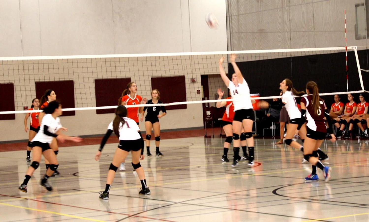 Natalie Spengler sets a volleyball to one of her hitters.