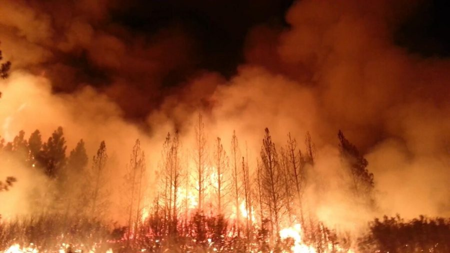 %22The+Rim+Fire+in+the+Stanislaus+National+Forest+near+in+California+began+on+Aug.+17%2C+2013+and+is+under+investigation.+The+fire+has+consumed+approximately+149%2C+780+acres+and+is+15%25+contained.%22+%28U.S.+Forest+Service+photo%29