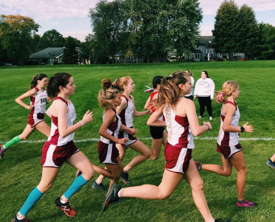 Girls cross country competes at state